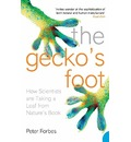 The Gecko's Foot