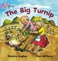The Big Turnip
