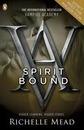 Vampire Academy: Spirit Bound (book 5)