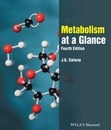 Metabolism at a Glance