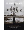 Animate Planet
