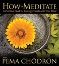 How to Meditate with Pema Chodron